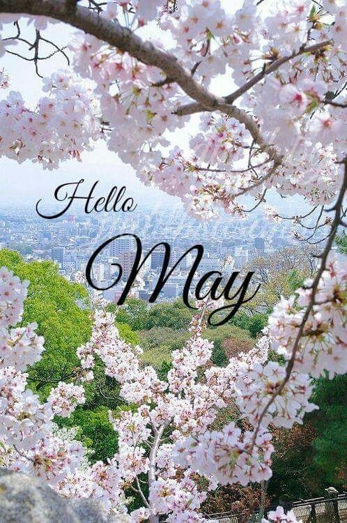 Hello May Month May Quotes Hello May Welcome May May Images