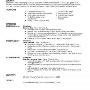 Best Esthetician Resume Example | Livecareer