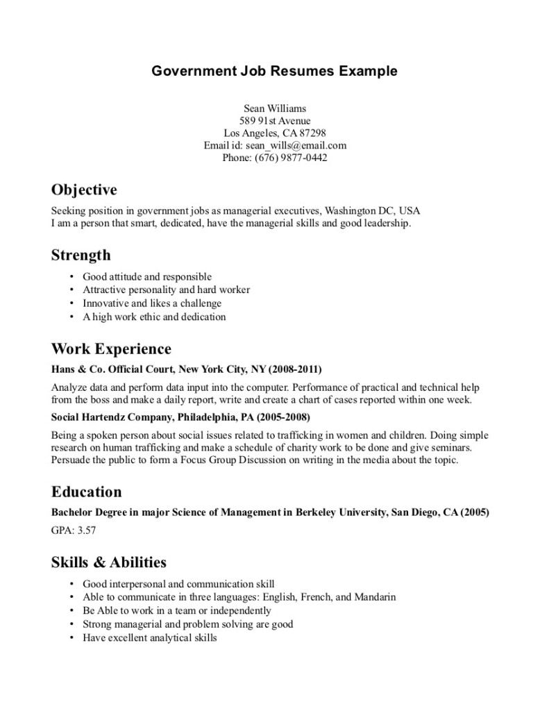 Government Job Resumes Example Image Simple Resume Examples