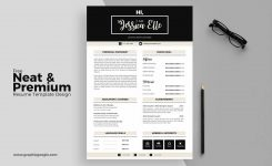17+ Free Resume Templates [Download Now]