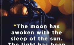 35 Best Witch Quotes – Quotes And Sayings About Witches