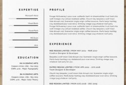 Indesign Resume Layouts