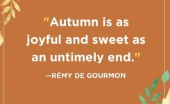 55 Fall Season Quotes – Best Sayings About Autumn