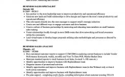 Business Sales Resume Samples | Velvet Jobs