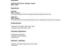 Excellent Resume High School Student Summer Job With Work