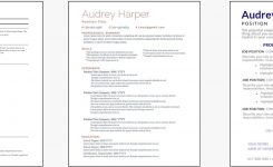 Free Professional Resume Templates | Indeed