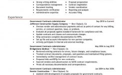 Government Resume Template For Microsoft Word   Livecareer