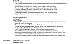 Insurance Broker Resume Samples | Velvet Jobs