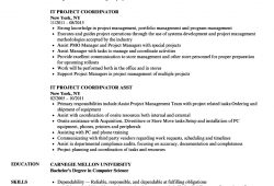Project Coordinator Resume Example