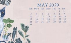 May 2020 Desktop Calendar Wallpaper In 2020 | Calendar