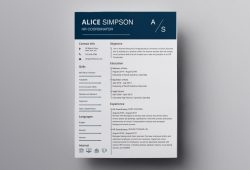 Resume Templates For Iworks