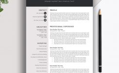 Professional Resume Template, 3 Page Cv Template, Creative Modern Resume  Design, Cover Letter, Ms Word, The Angelique Resume