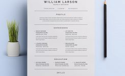 Really Like This Simple, Clean Resume Design! For More