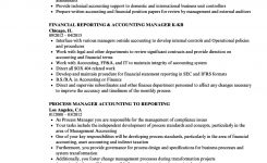 Reporting & Accounting Manager Resume Samples | Velvet Jobs