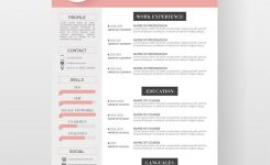 Resume Template Reume Templates Professional Cv Format In