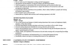 Senior Training Manager Resume Samples | Velvet Jobs