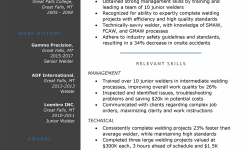 The Functional Resume: Template, Examples & Writing Guide | Rg
