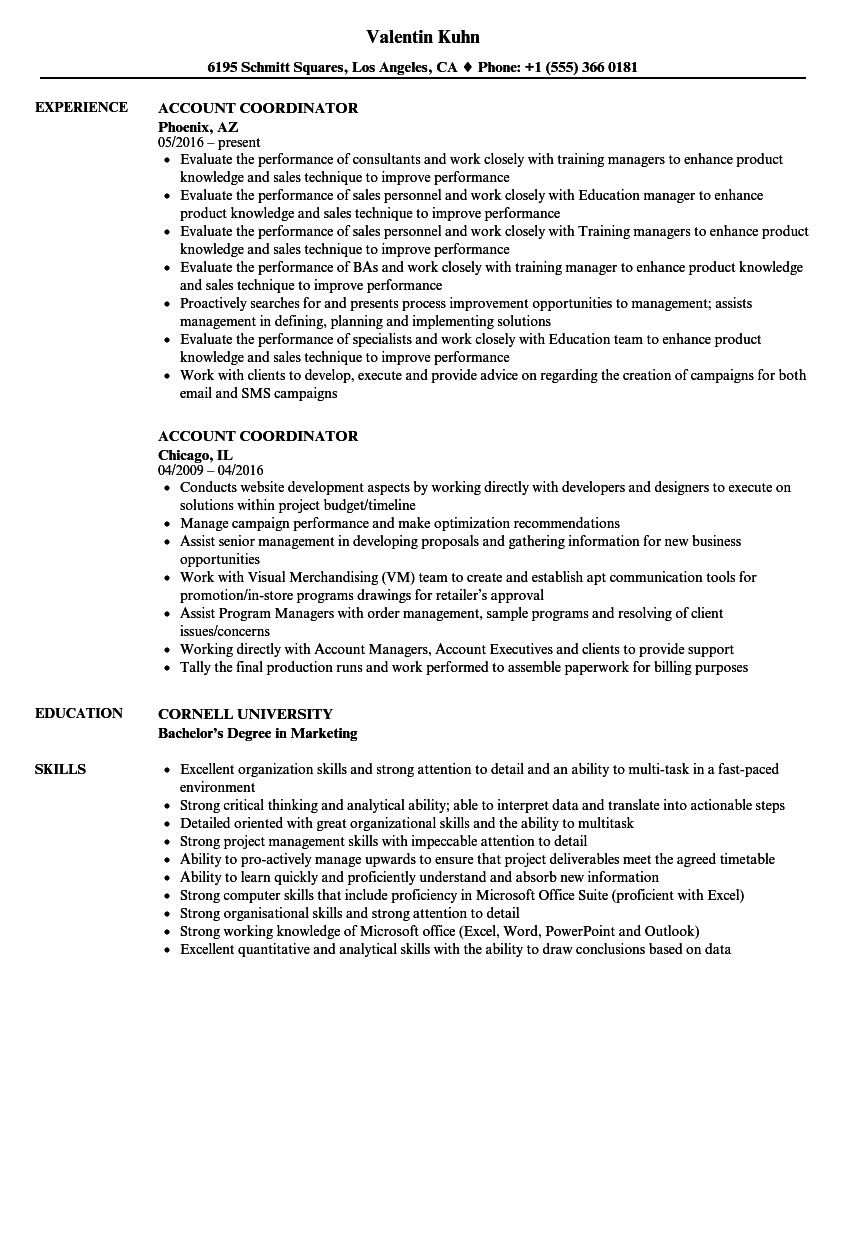 Accounting Coordinator Resume Example