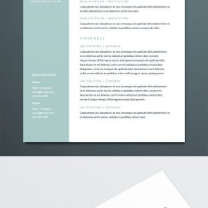 Modern Resume Template For Indesign | Free Download