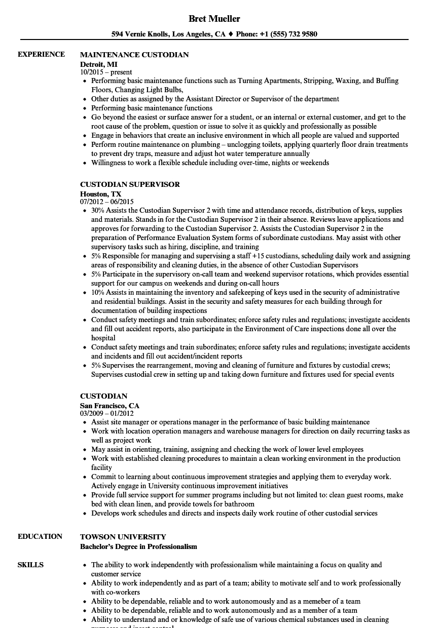 Custodial Engineer Resume Sample