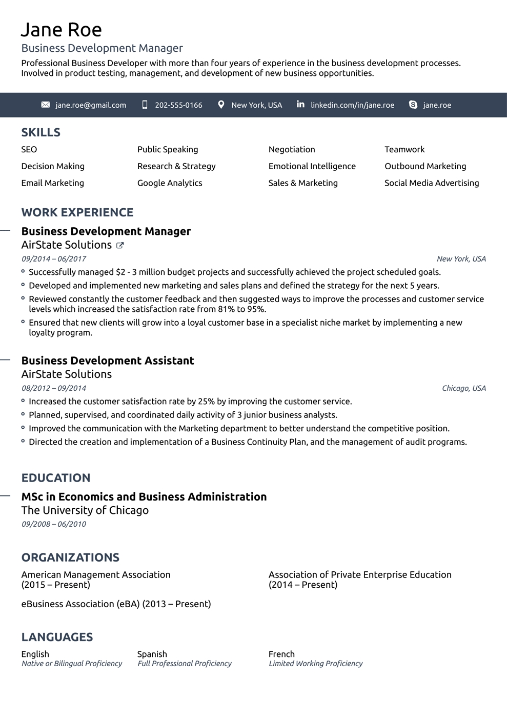Professional Job Resume Template