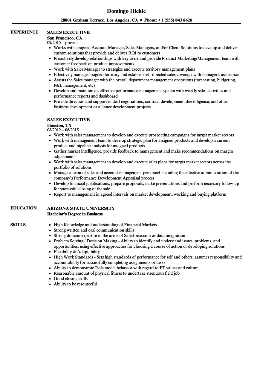 Sample Resume For Sales Executive