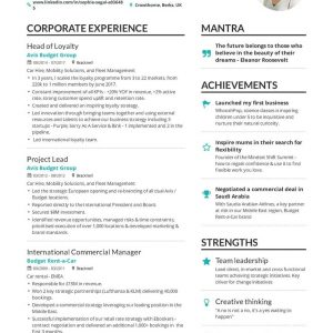 The Best 2019 Executive Resume Example Guide