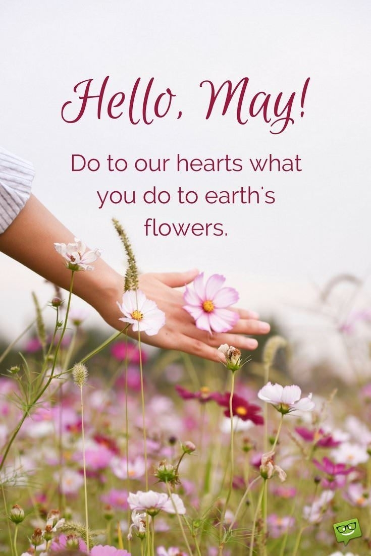 Hello May Quotes And Sayings