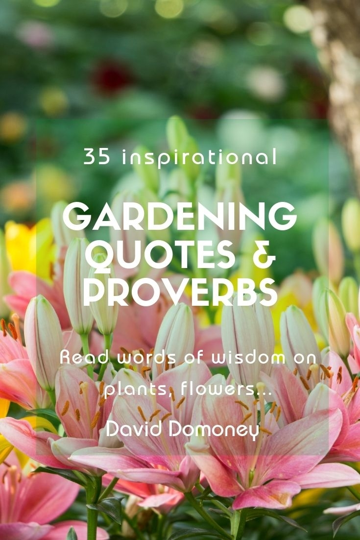 September Quotes Quote Garden