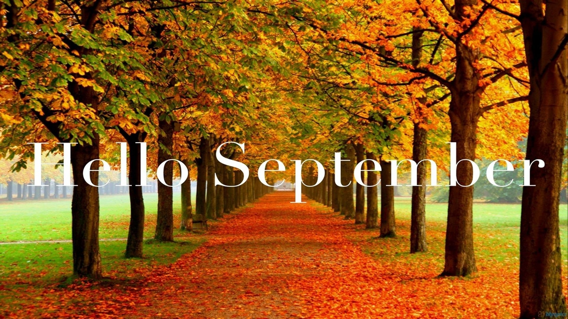 September Nature Quotes