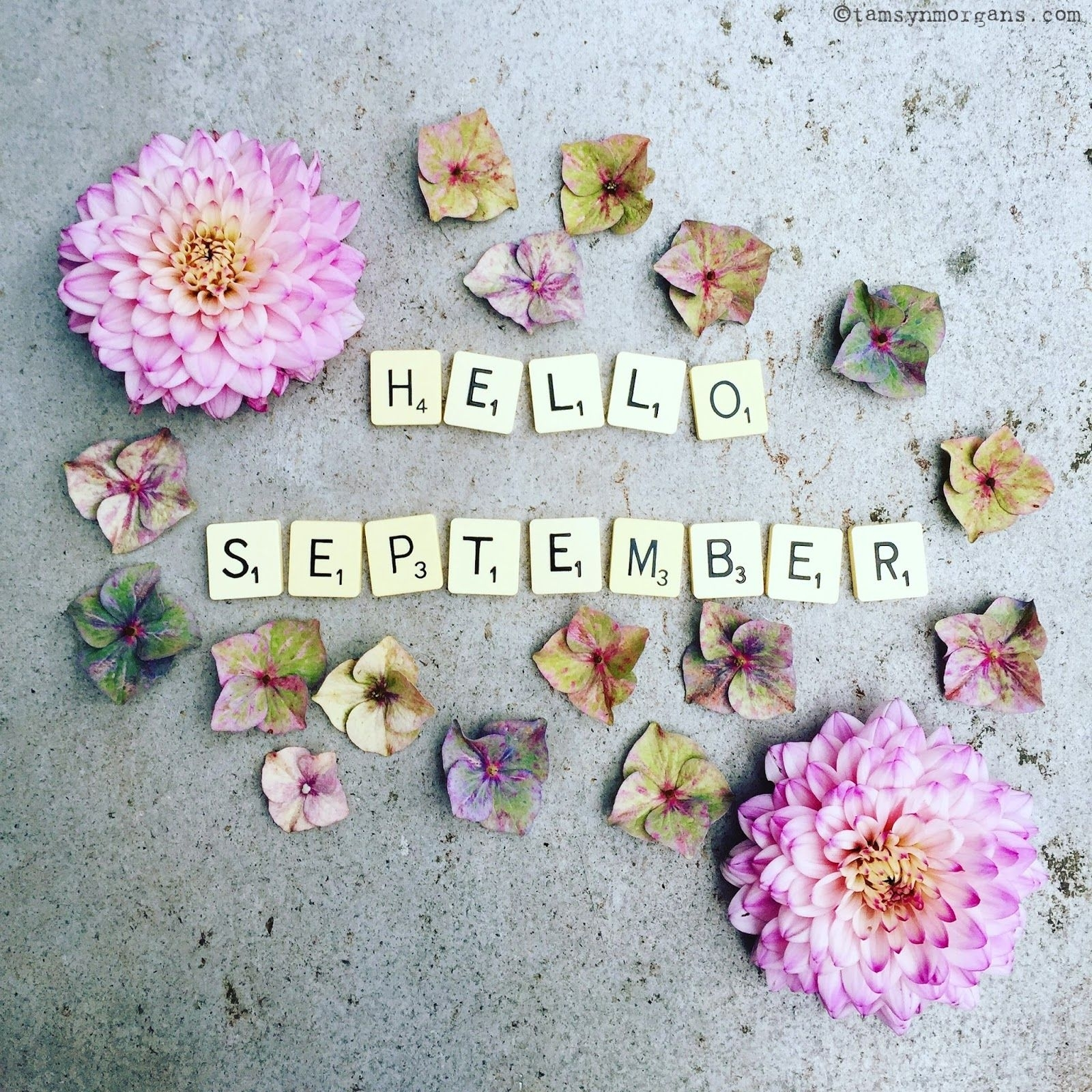 September Spring Quotes