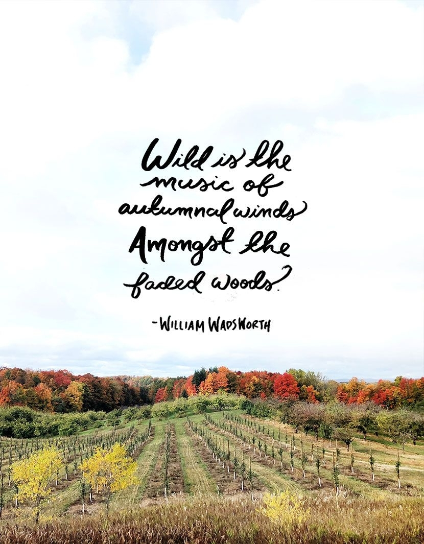 October Quotes Photo